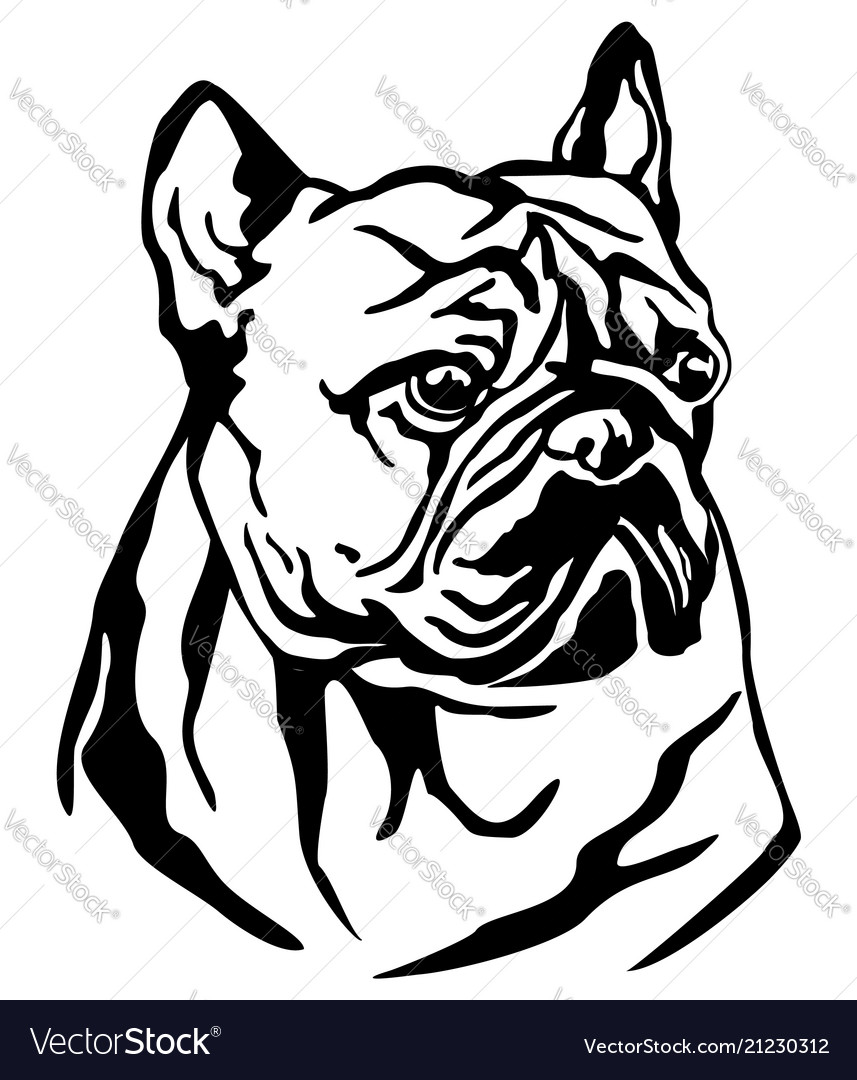Decorative portrait of dog french bulldog