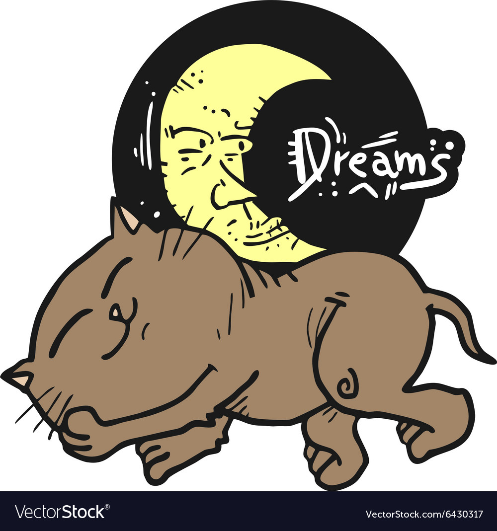 Cat dreams symbol vector image