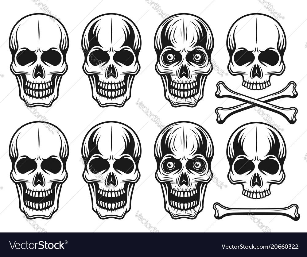 Set of different variants skulls elements