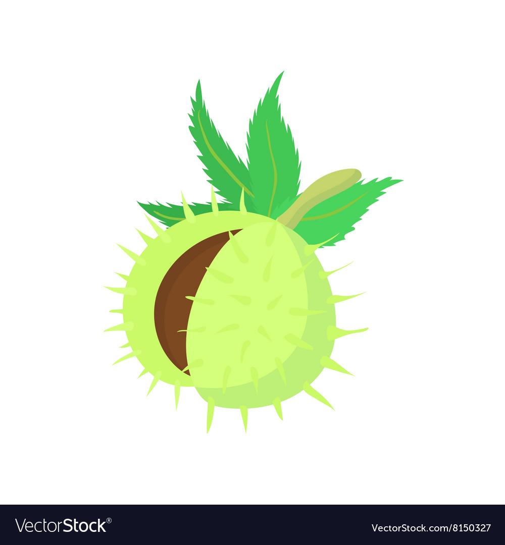 Hazelnuts icon cartoon style