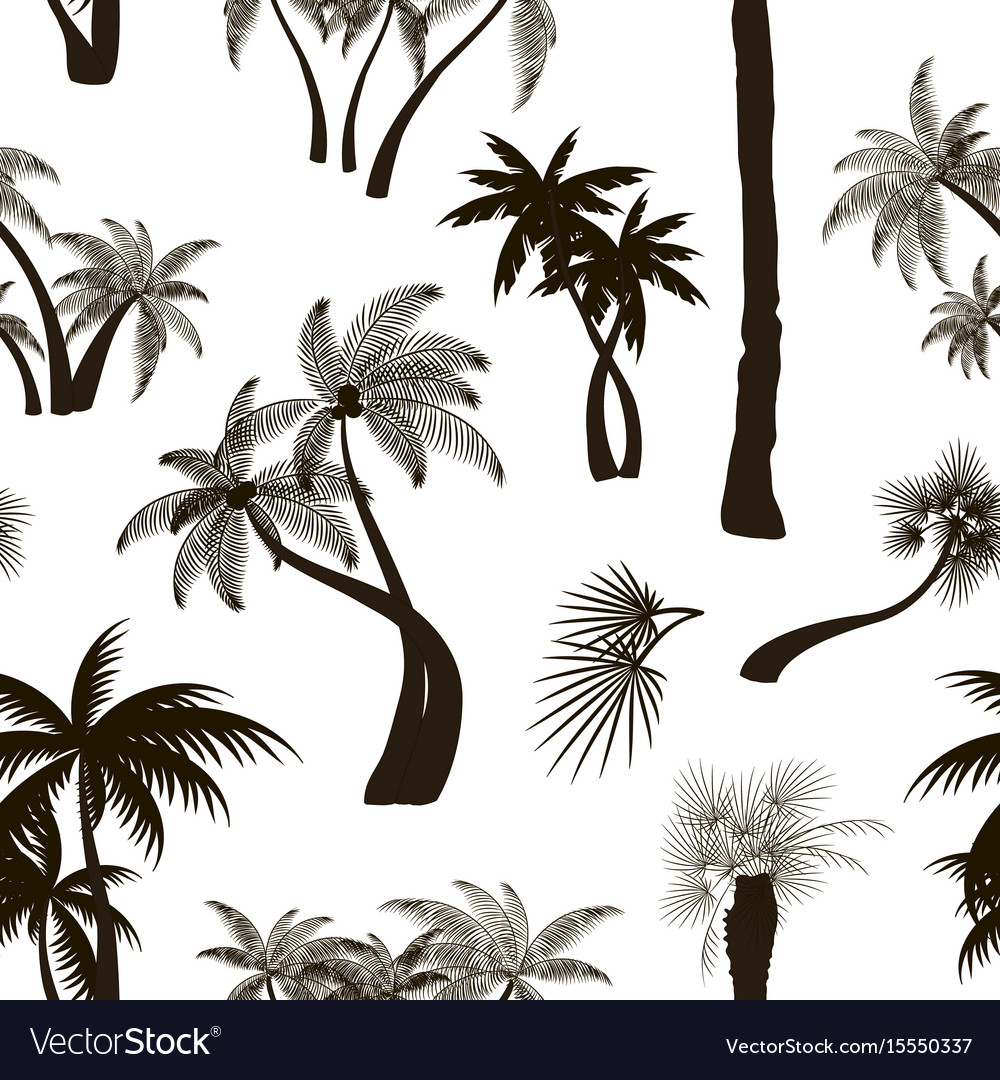 Palm collection pattern