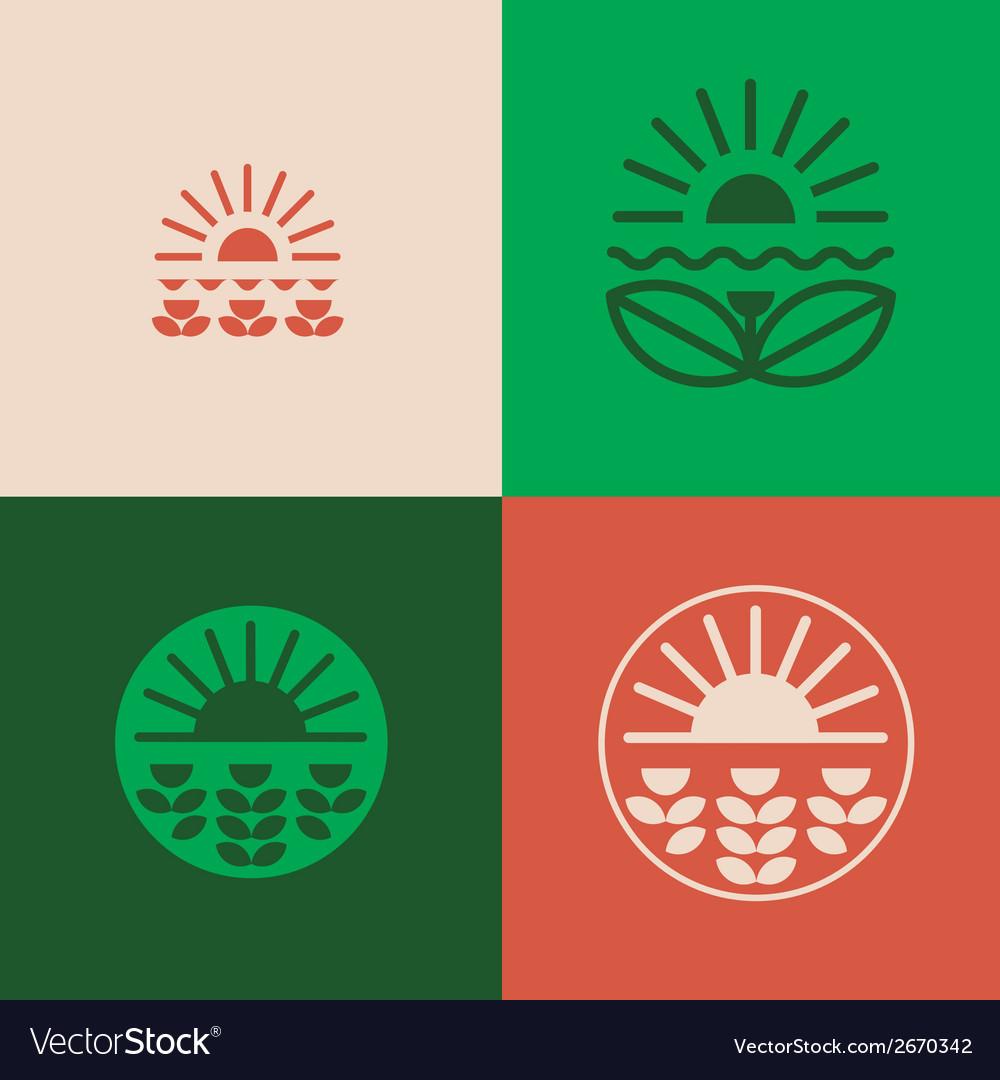 Floral emblems set vector image