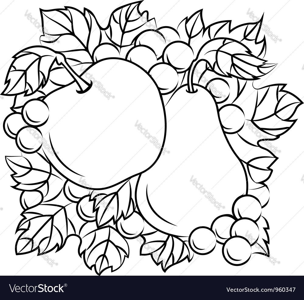 Fruits decoration with apple pear and grape