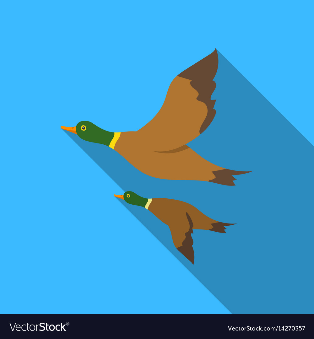 Ducks icon in flat style isolated on white