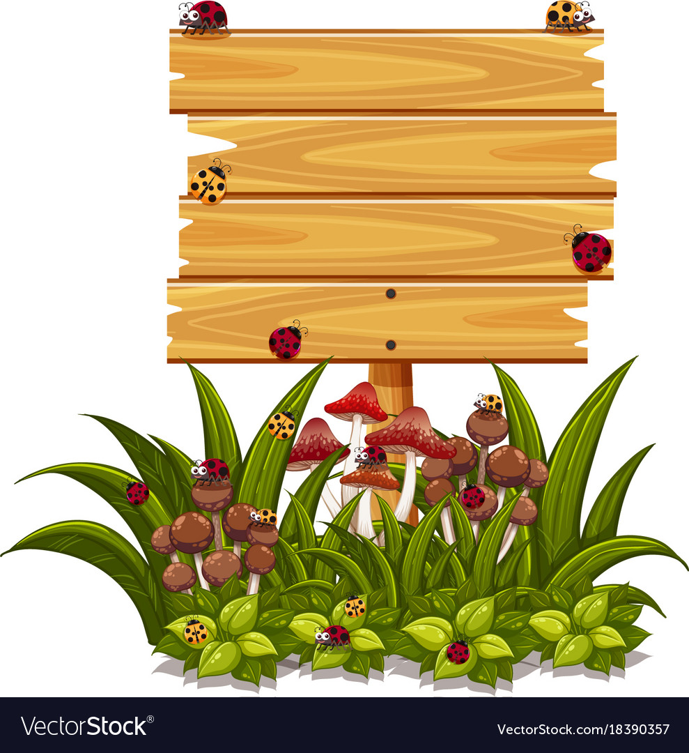 wooden sign template with ladybugs in garden vector image