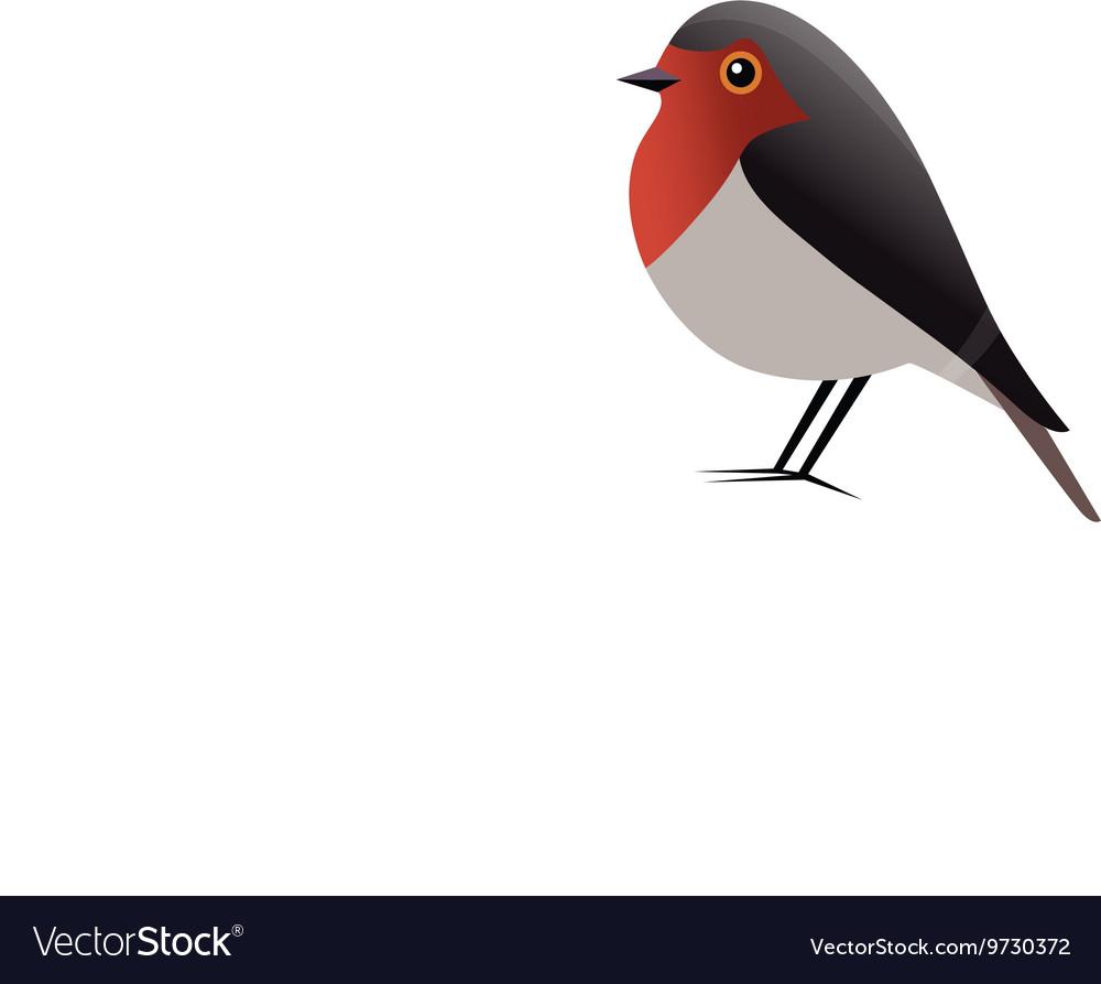 Robin Bird Clipart