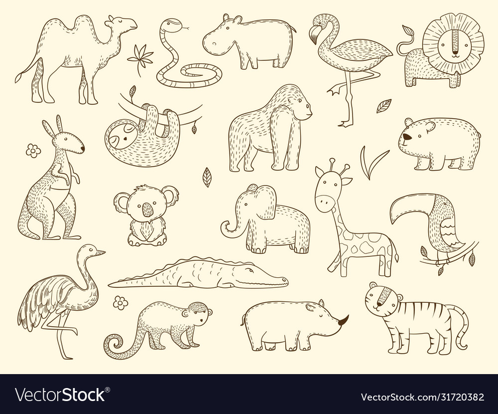 African wildlife animals jungle safari characters vector
