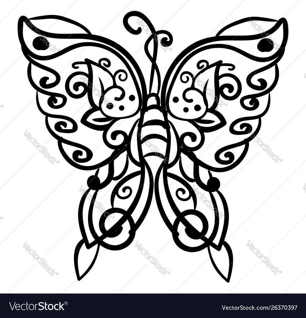 Butterfly drawing on white background