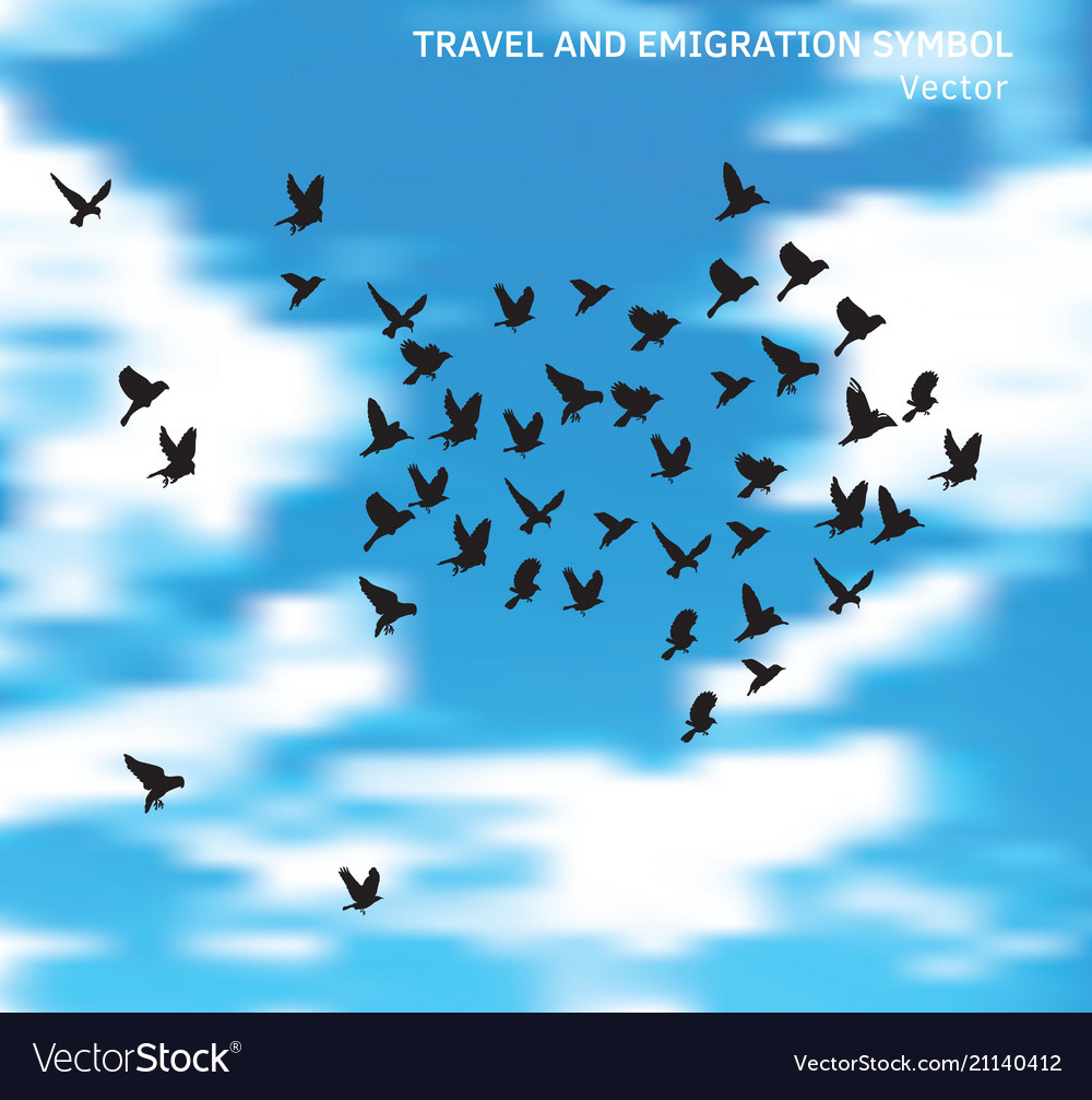 Travel and emigration birds symbol in blue clouds