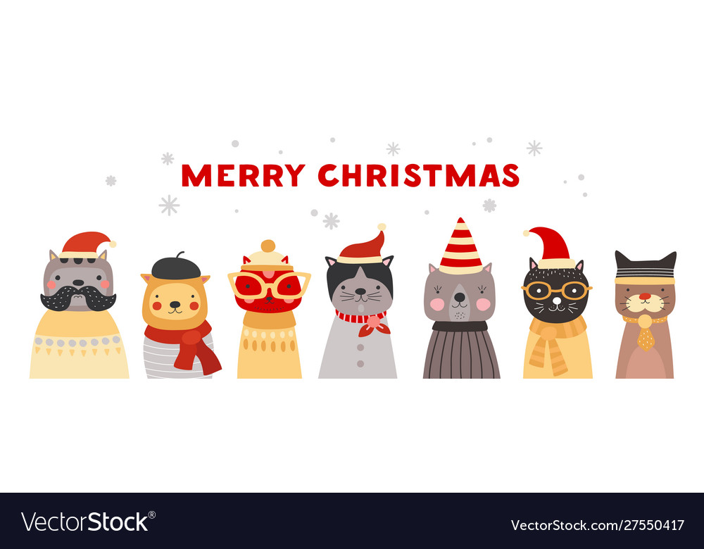 Christmas cats cute kittens in santa hats winter
