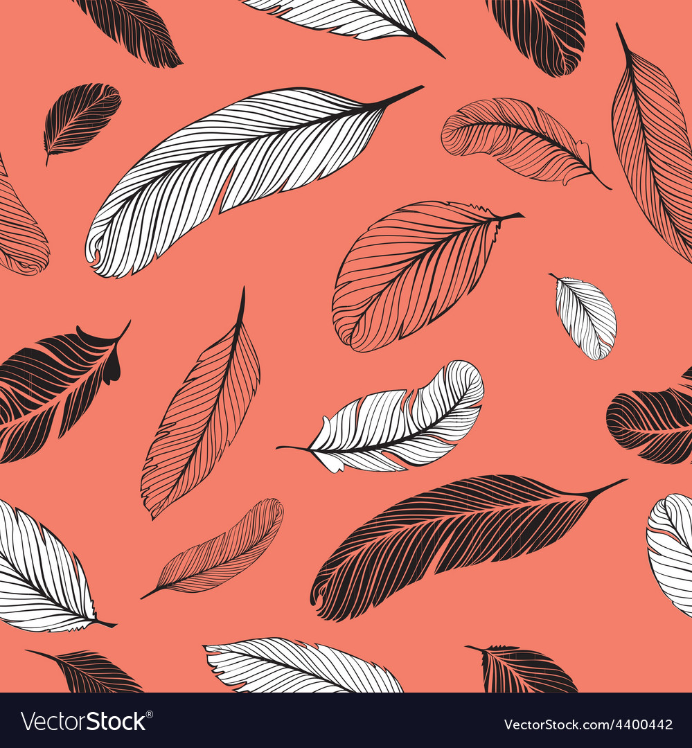 Feathers pattern pink vector image