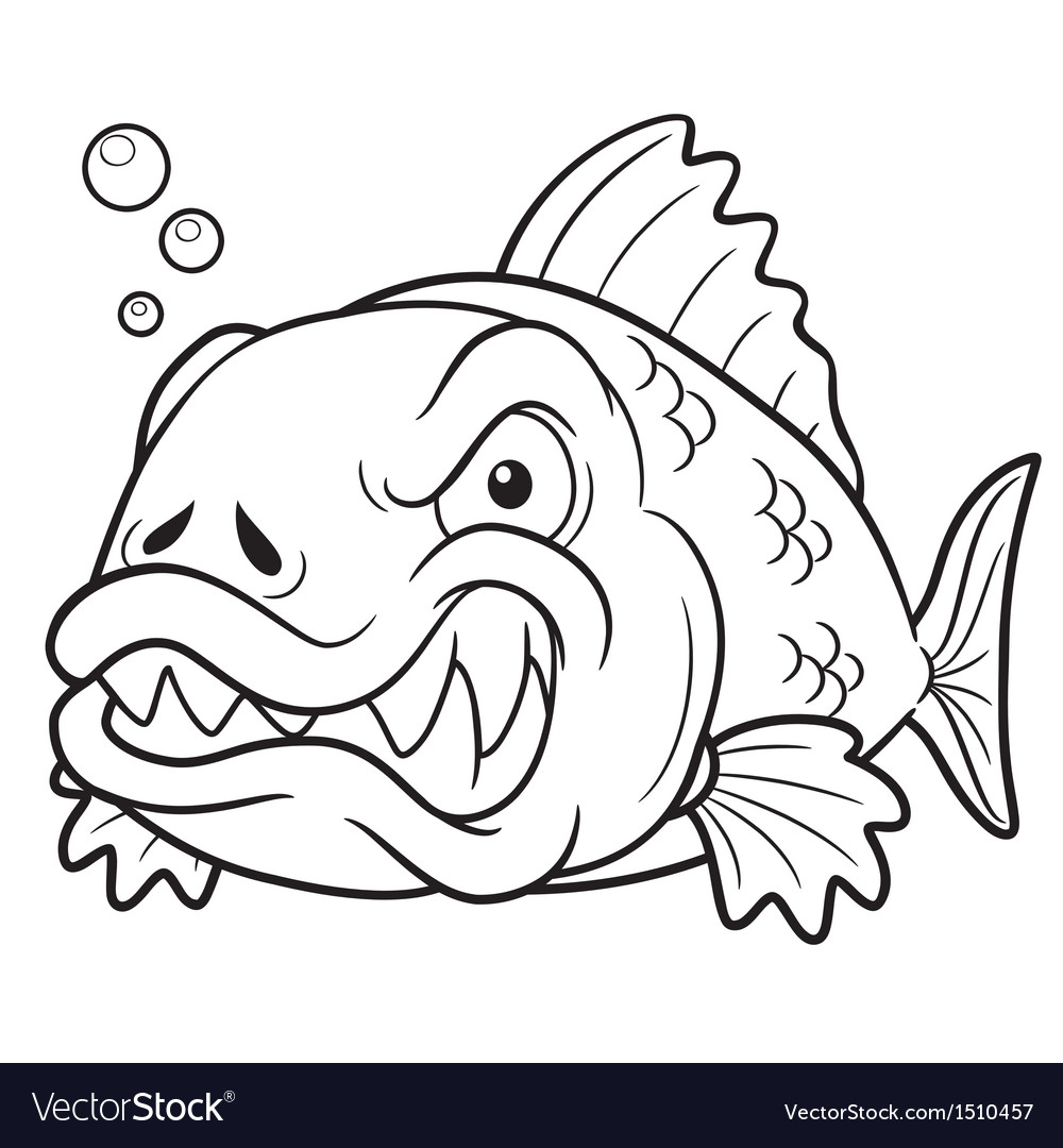 - Fish Angry Outline Royalty Free Vector Image - VectorStock