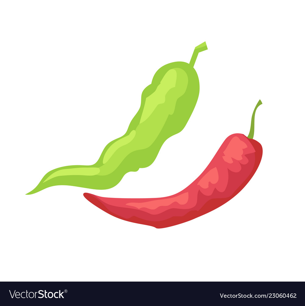 Pepper pods isolated icon in cartoon style