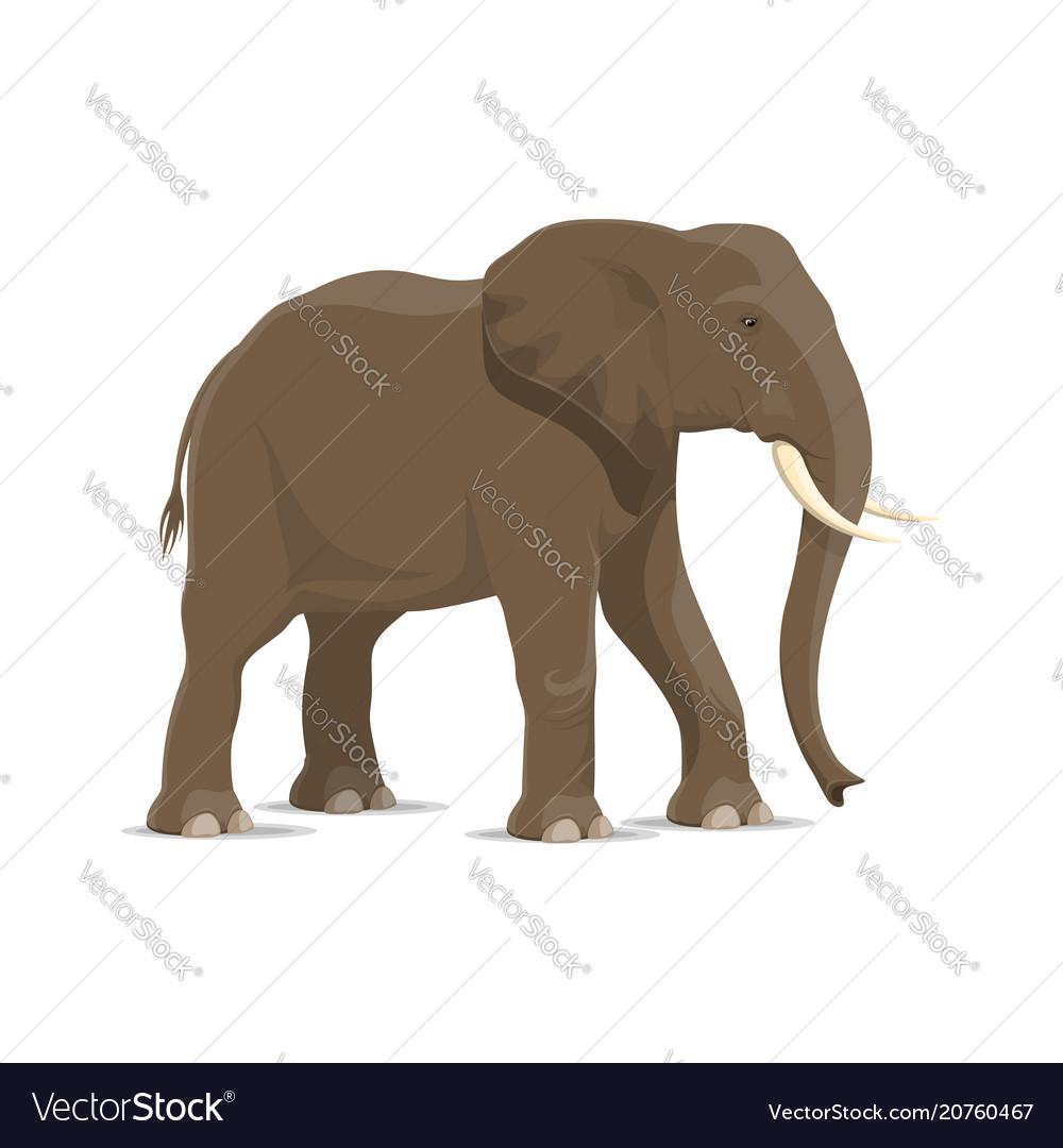 Elephant animal icon of african savanna mammal