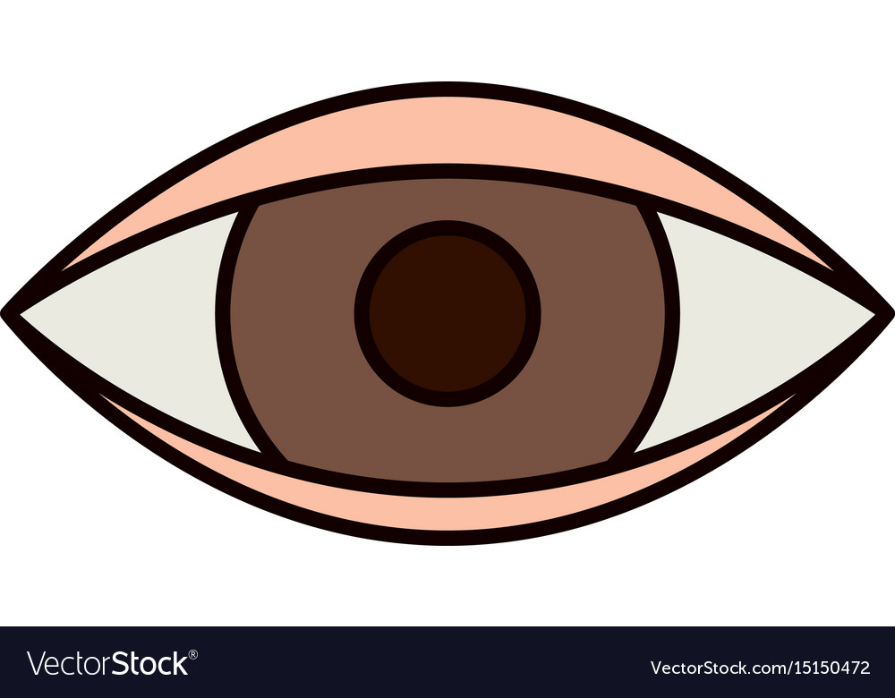 Color sketch silhouette eye symbol browser vector image