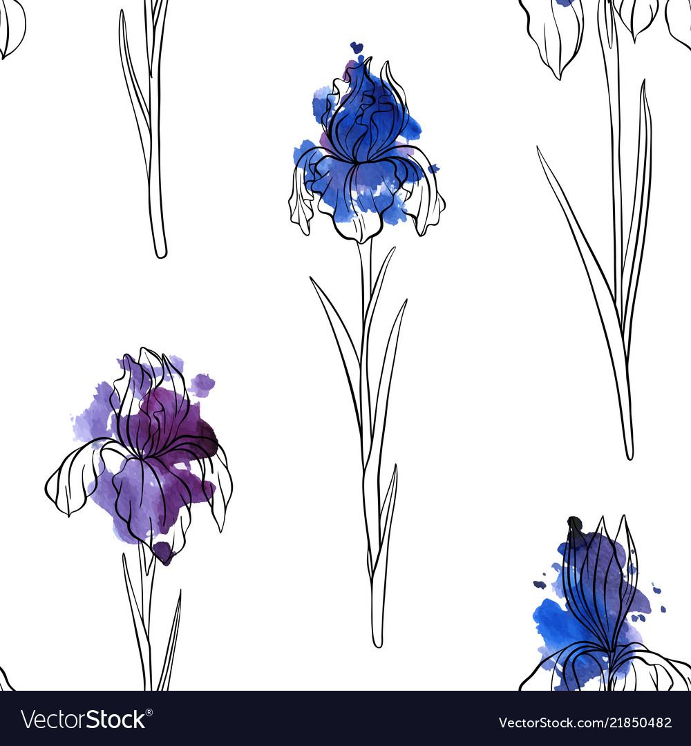 Seamless pattern with flowers of iris royalty free vector seamless pattern with flowers of iris vector image izmirmasajfo