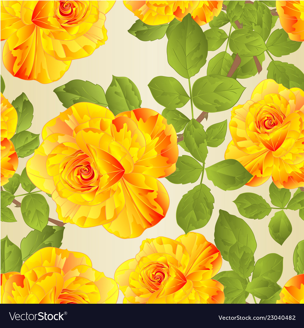 Seamless Texture Flower Yellow Rose Stem Vector Image