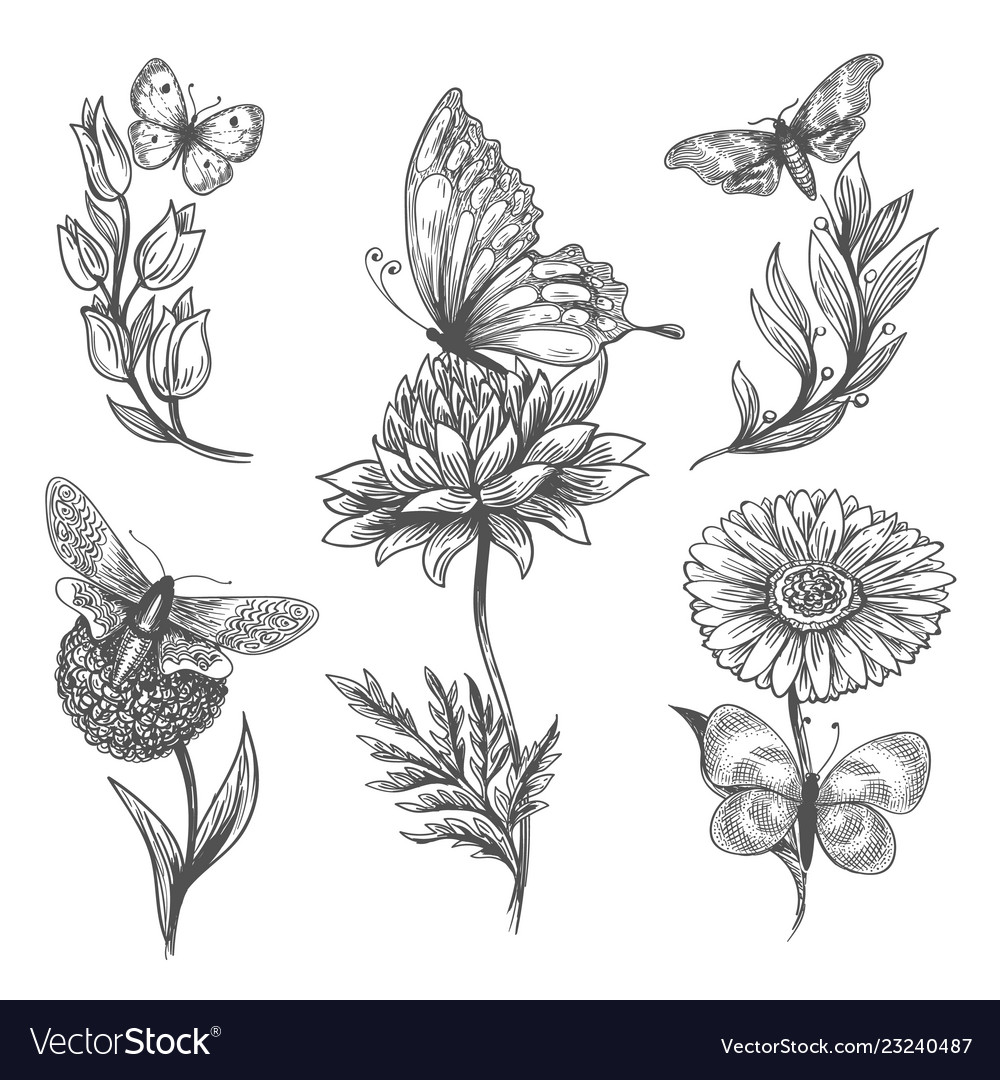 Butterfly and flowers doodle sketch icons