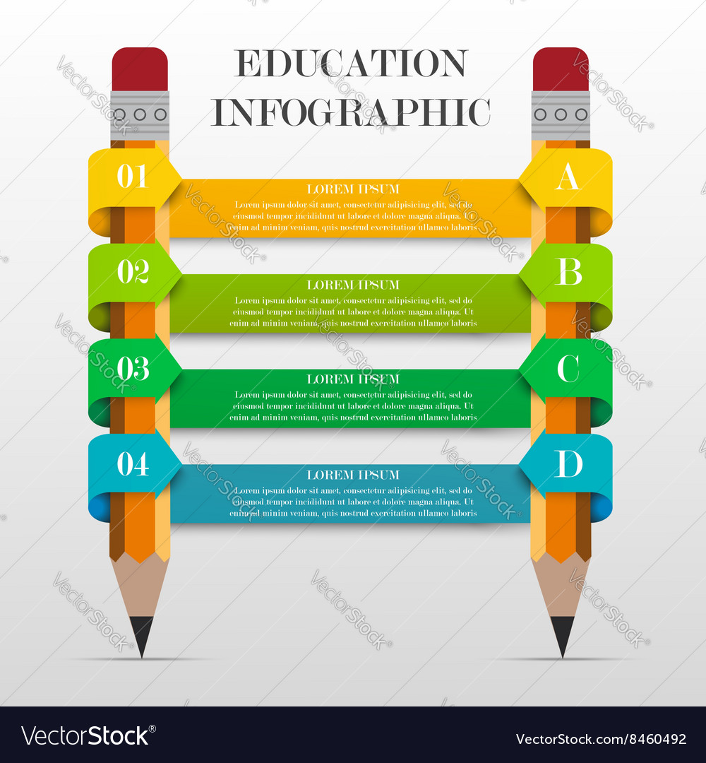 infographic education banner royalty free vector image