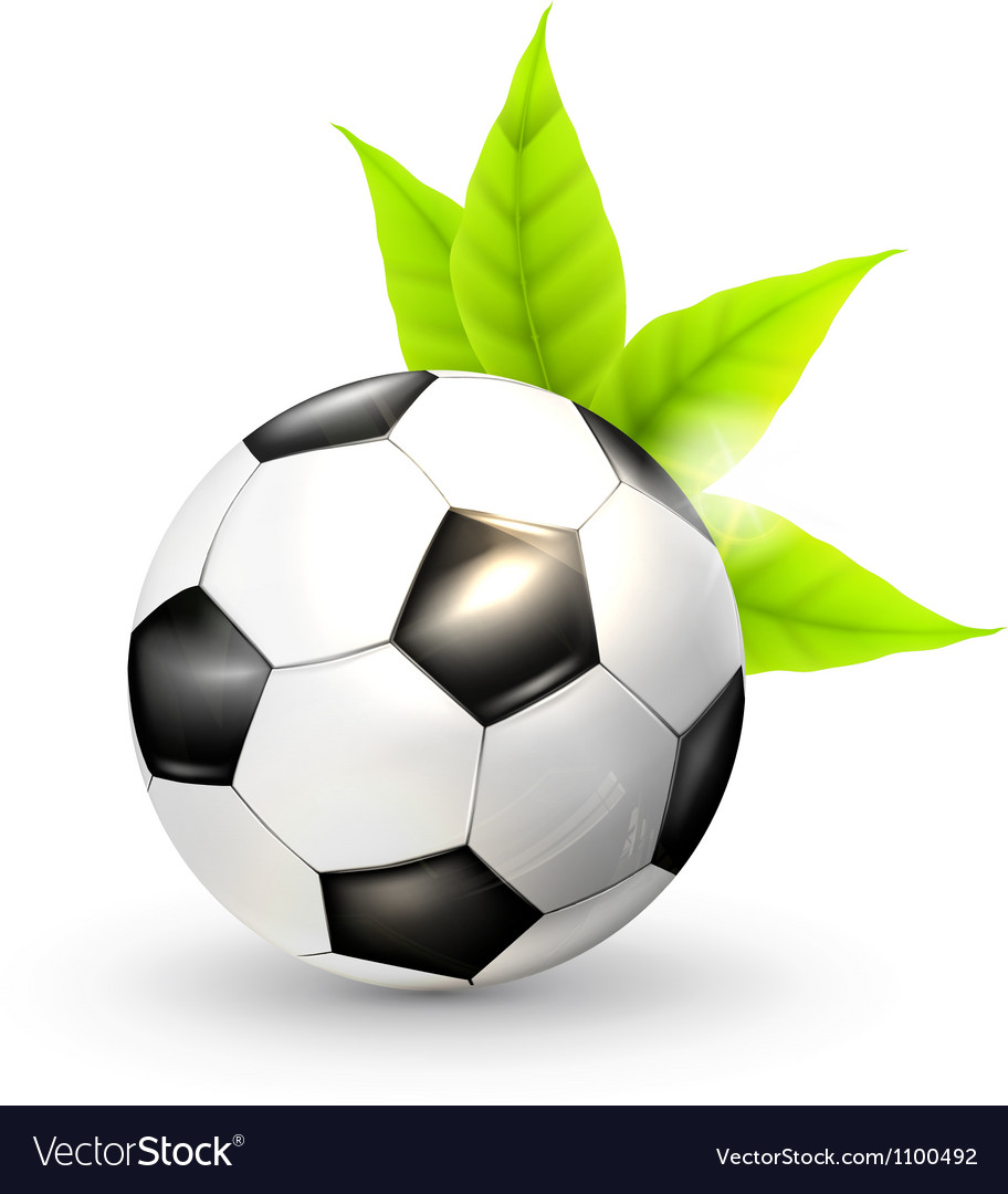 Soccer ball and green leaves