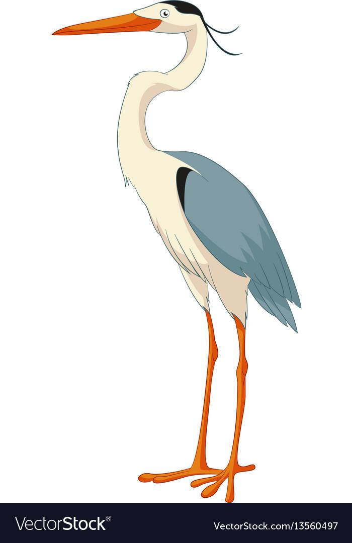Cartoon smiling heron vector image
