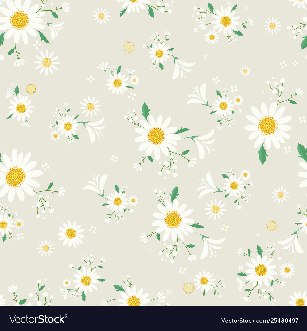 Seamless daisy floral pattern beautiful daisy flo