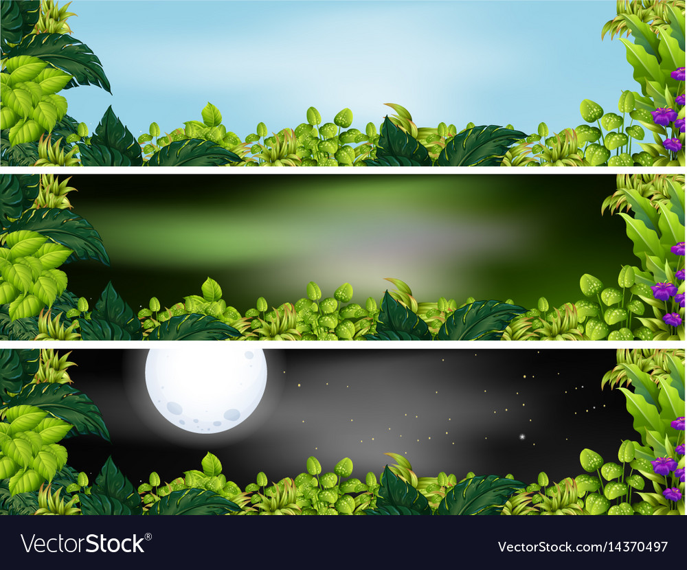 Three garden scenes at different times of day