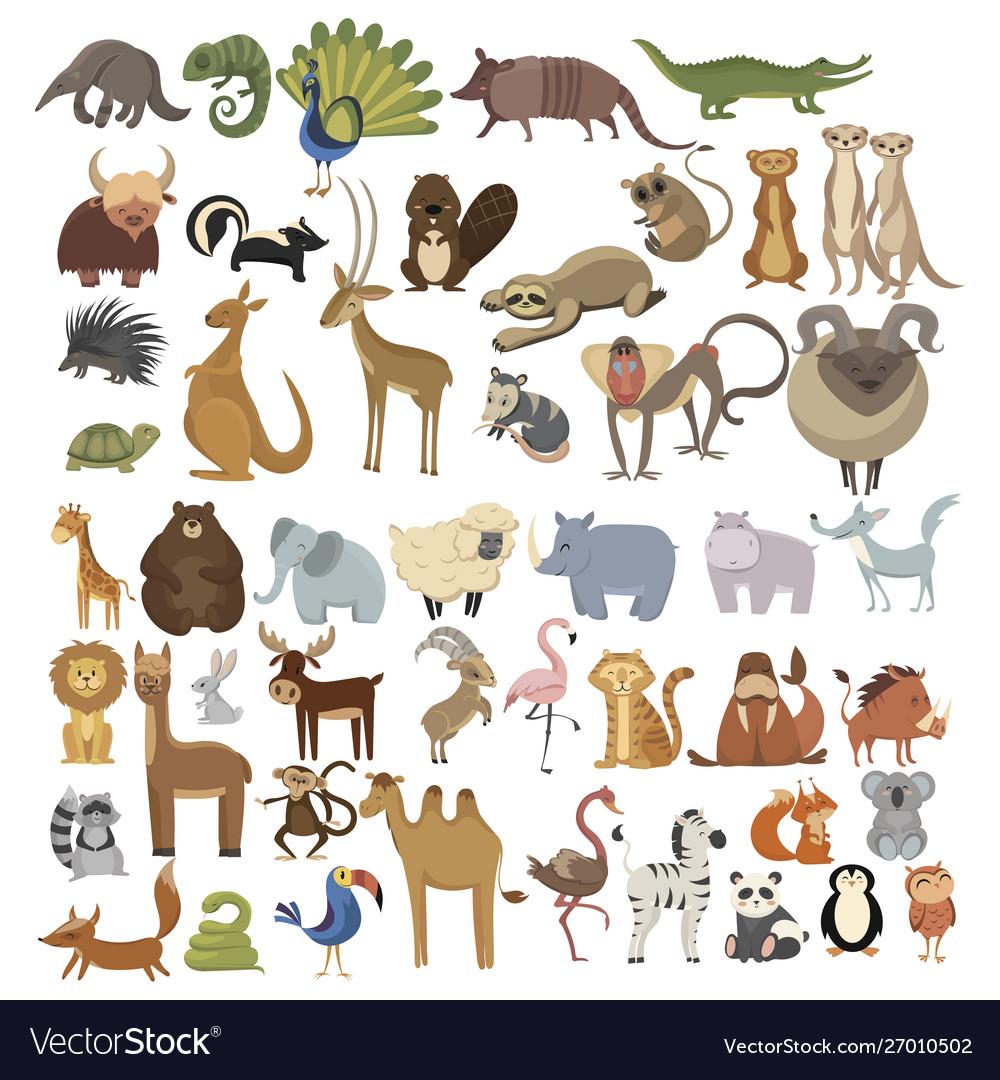 Set animals collection cartoon animals