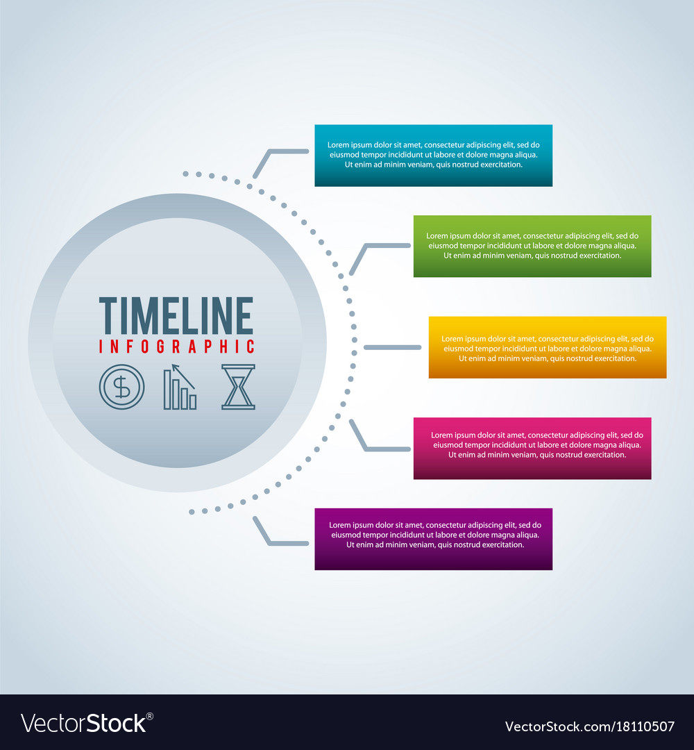 timeline infographic bar graph business royalty free vector