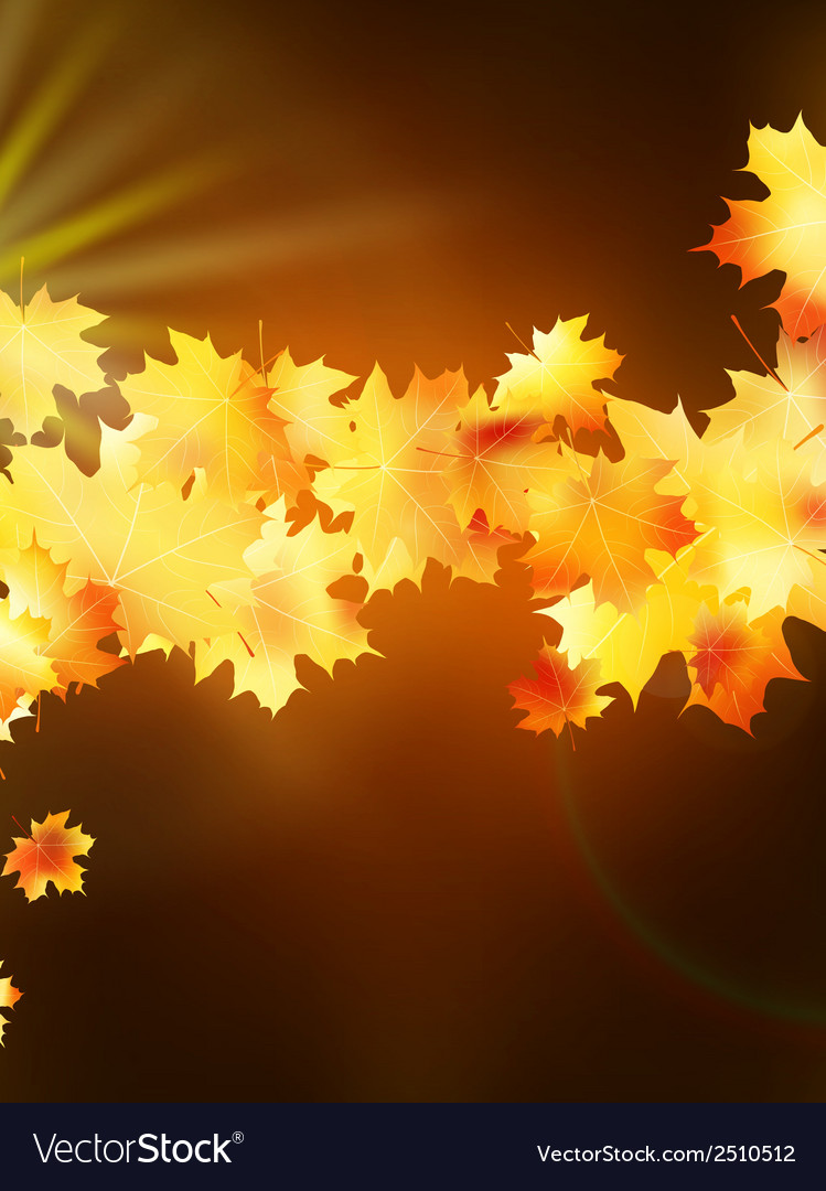 Autumn leaves on colorful plus EPS10