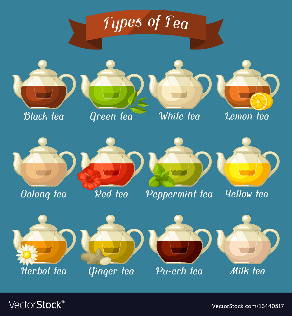 Types of tea set of glass kettles with different vector image