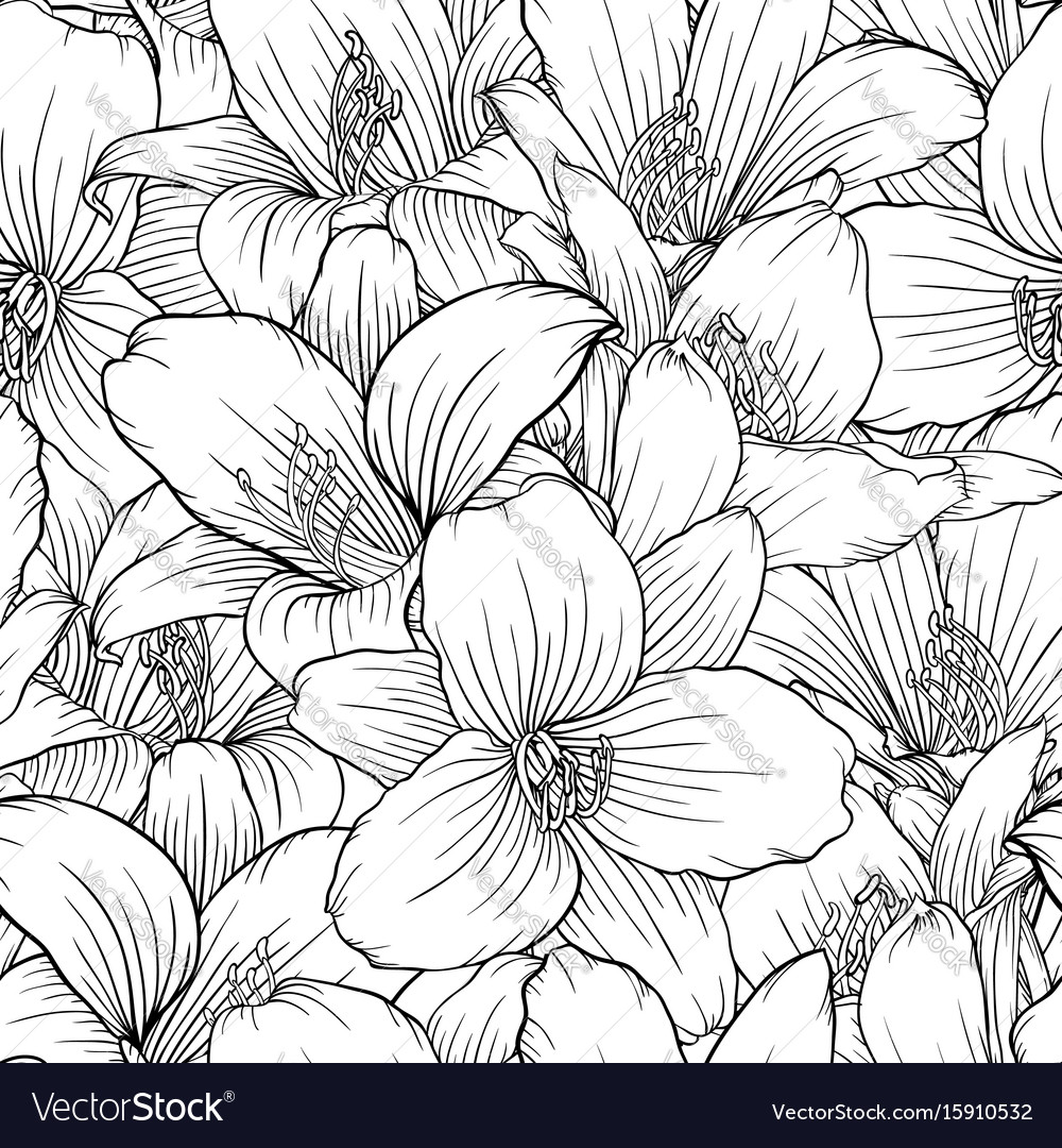 Beautiful monochrome black and white seamless vector image