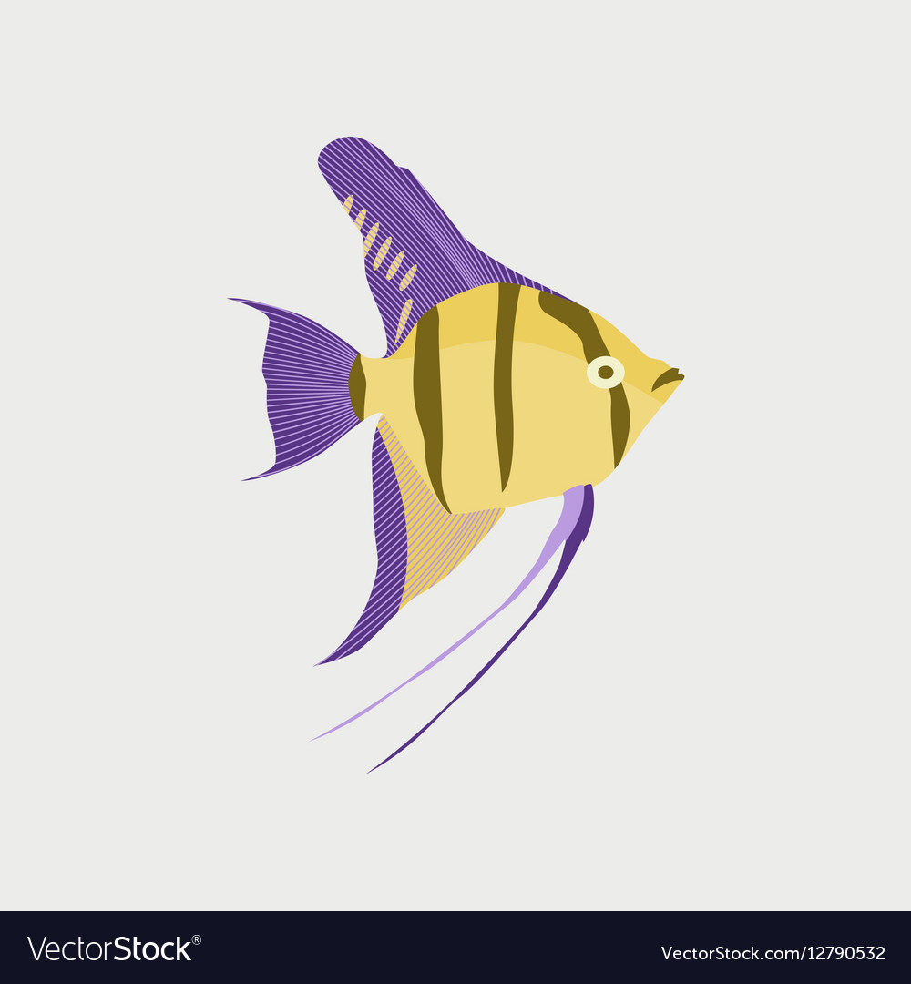 In flat style angelfish