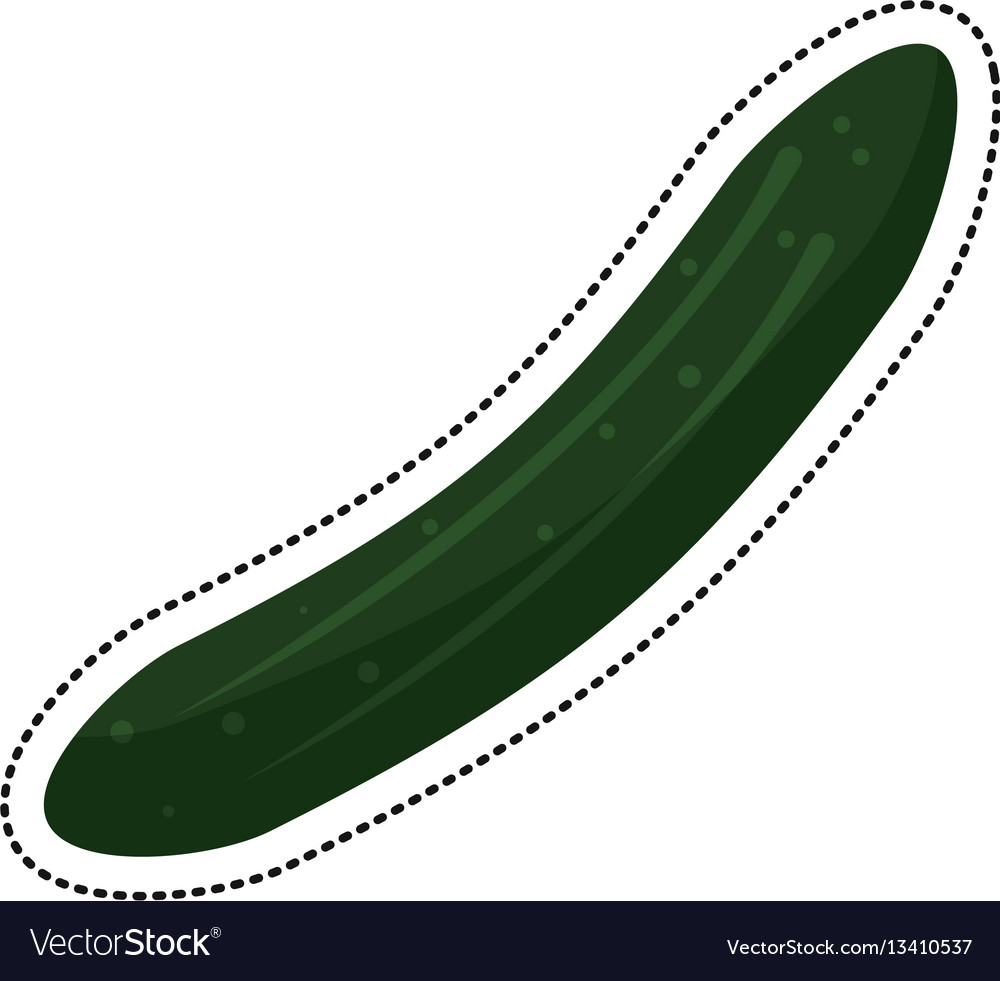 Cartoon cucumber vegetable nutrition icon vector image
