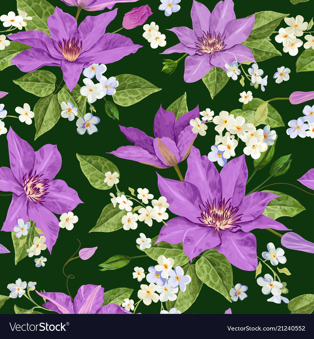 Clematis flowers floral tropical seamless pattern