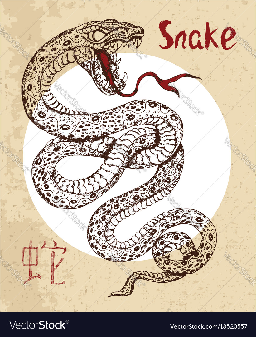 chinese zodiac symbol of etching snake royalty free vector