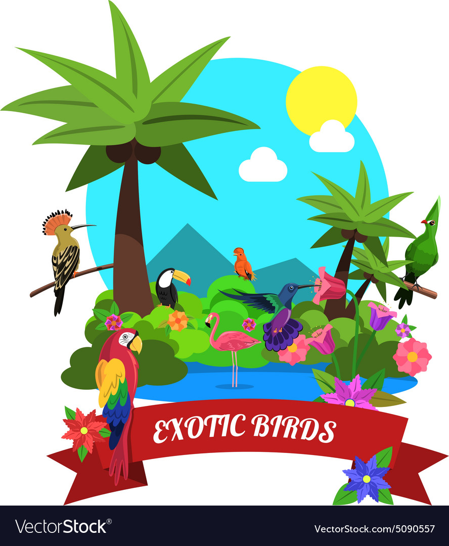 Exotic Birds Concept vector image