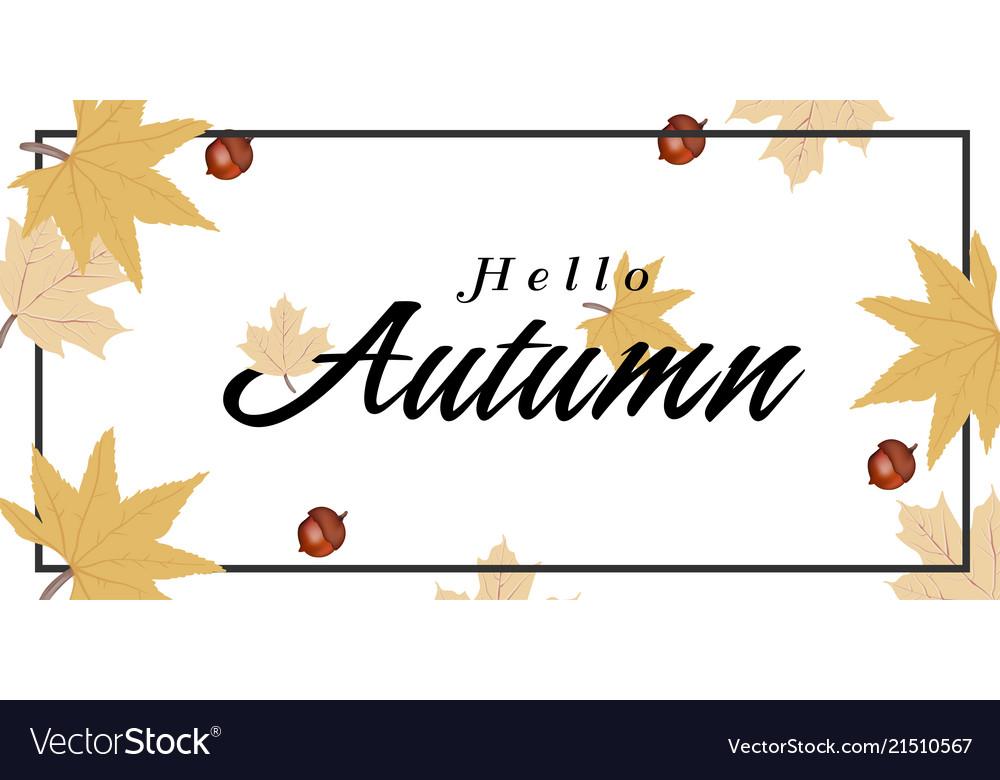 Hello autumn maple leaves nut background im