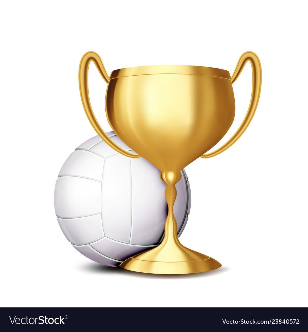 Volleyball award volleyball ball golden