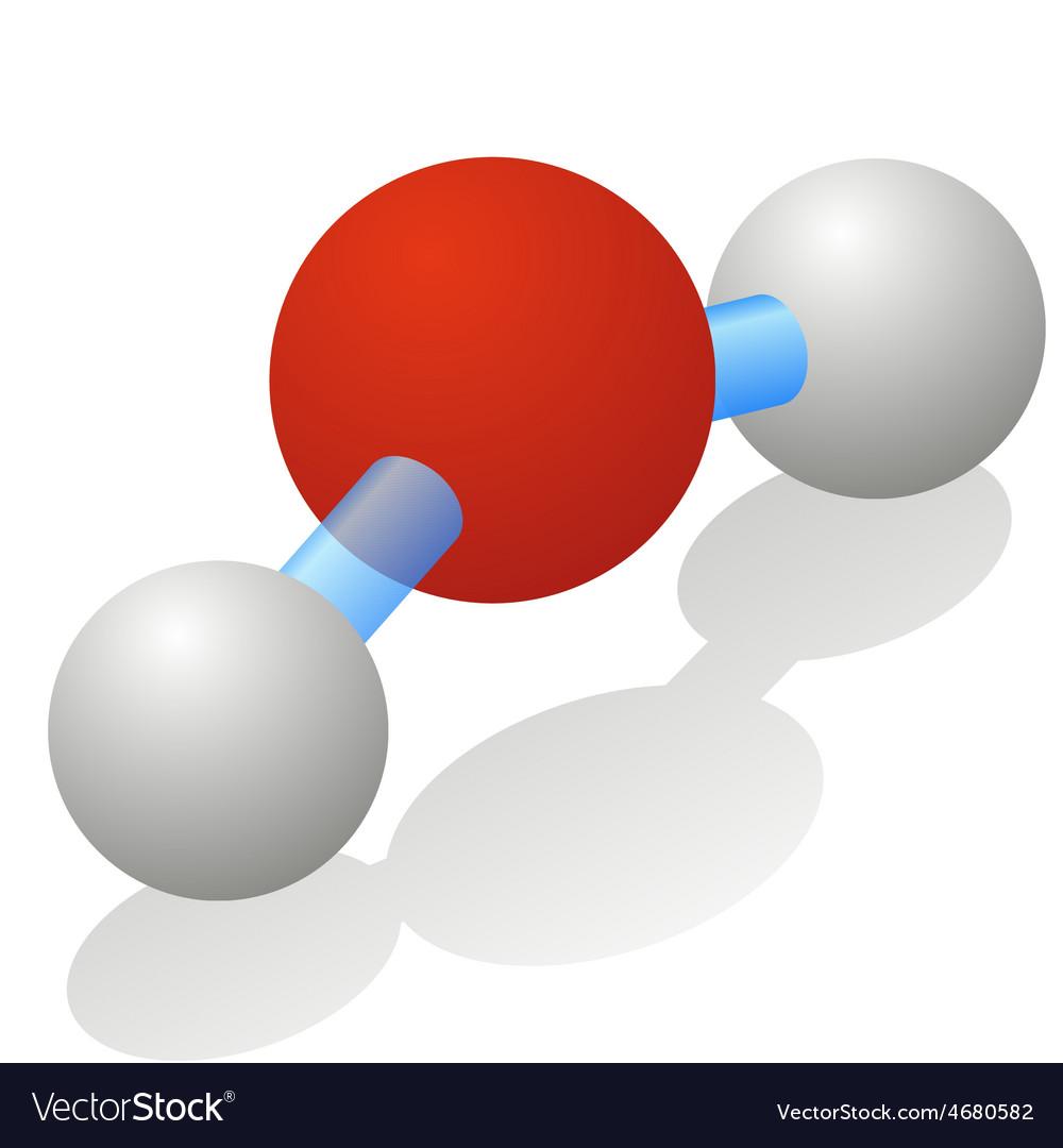 Water molecule vector image
