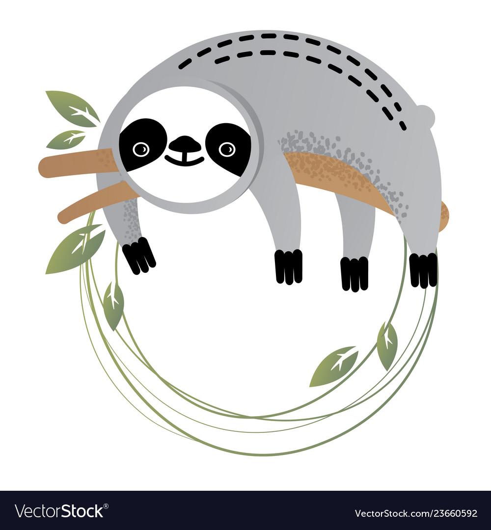Frame of a cute sloth