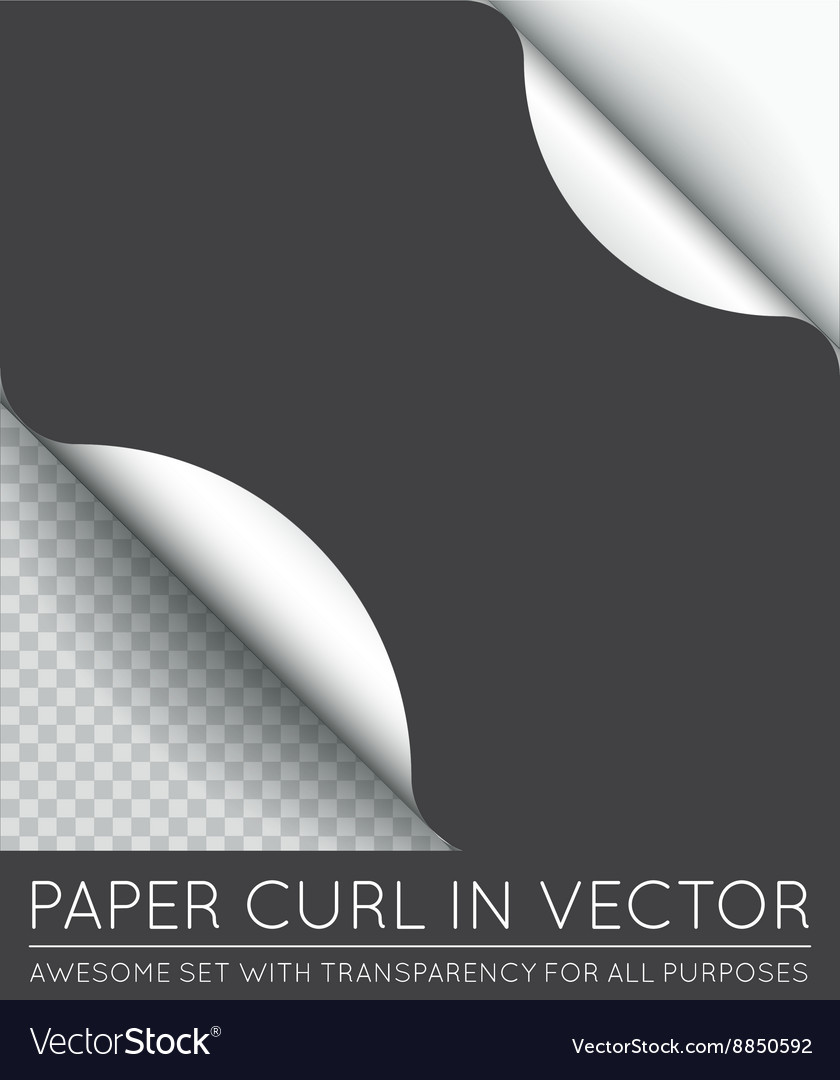 Paper Page Curl with Shadow Isolated vector image