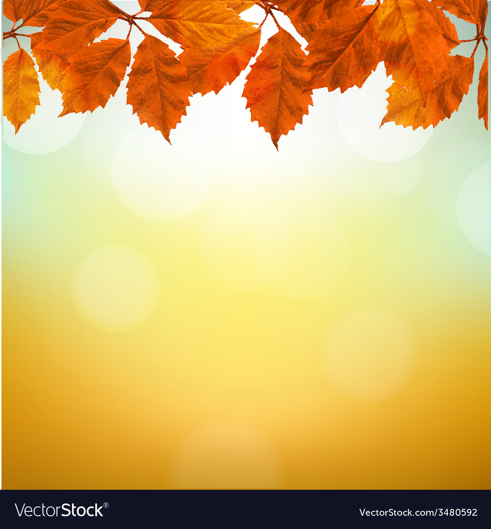Vintage Autumn Background With Leaves