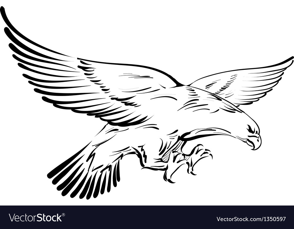 Doodle eagle
