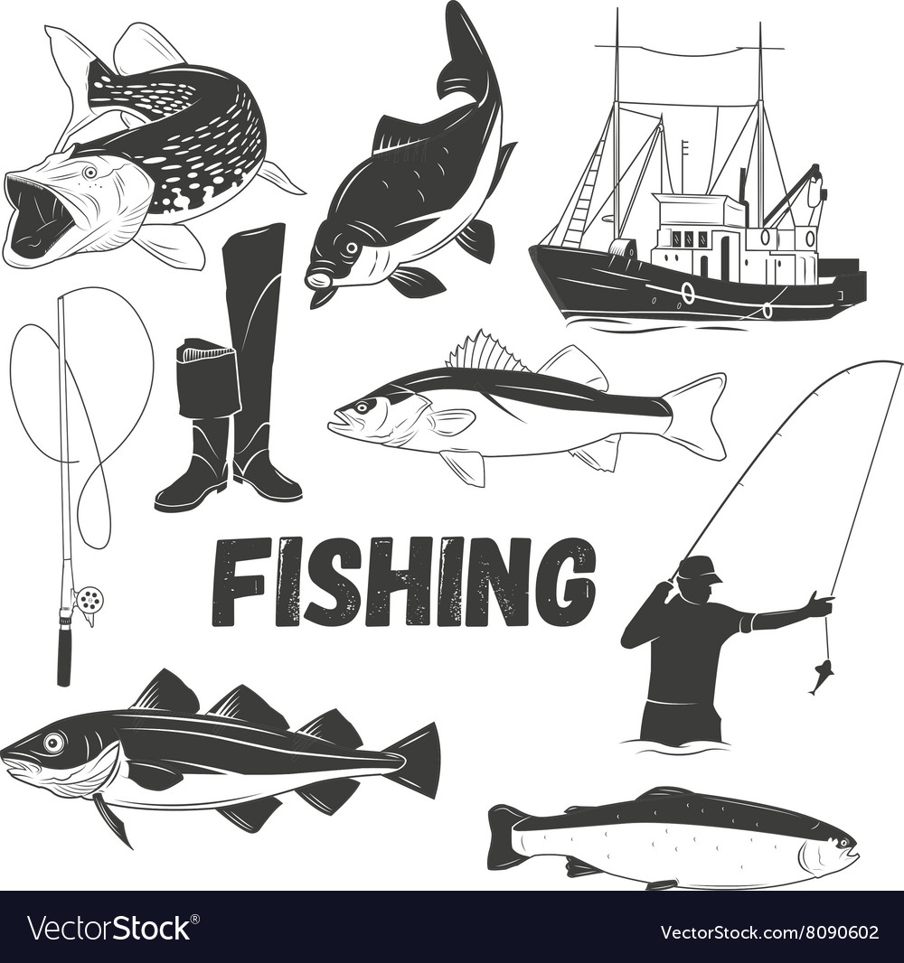 Set of fishing labels in vintage style