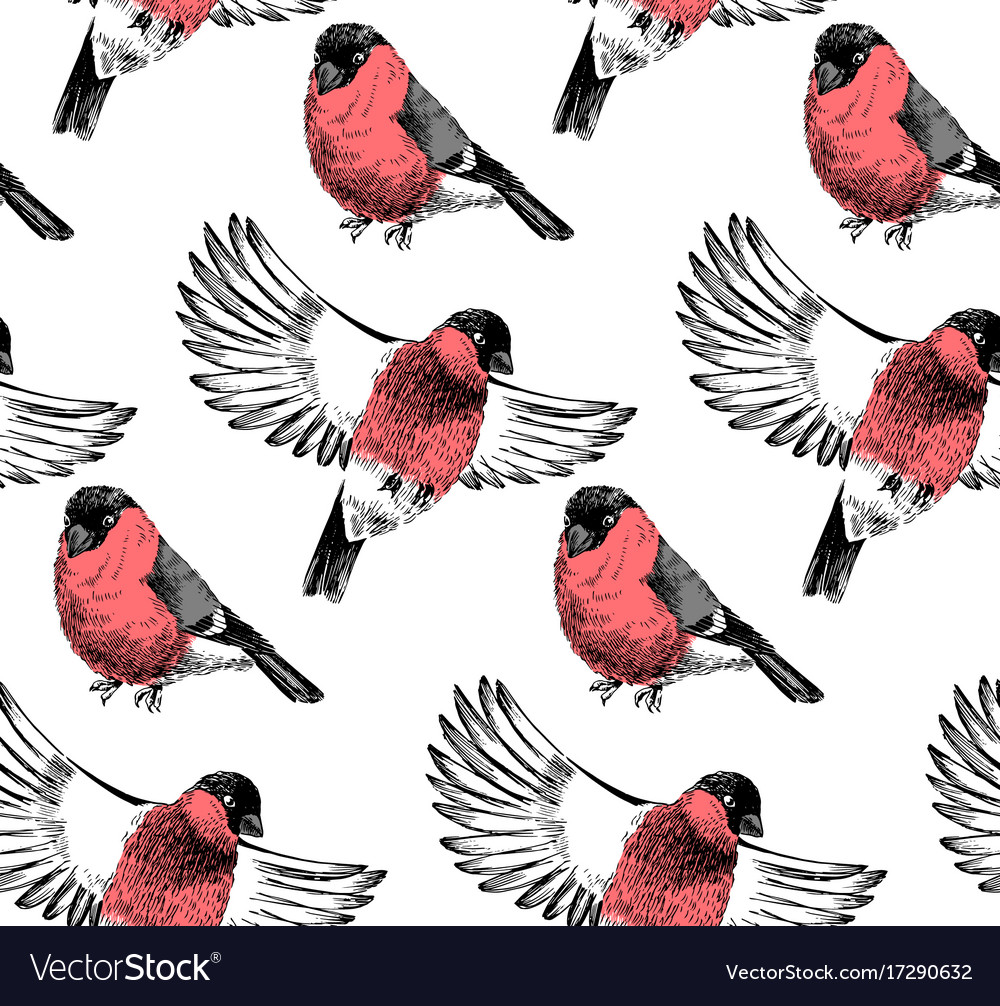 Hand sketched pattern with bullfinches