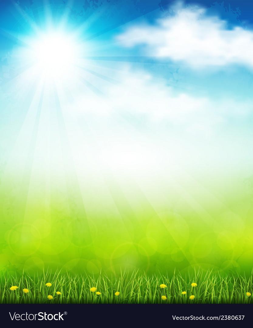 Bright summer vector image