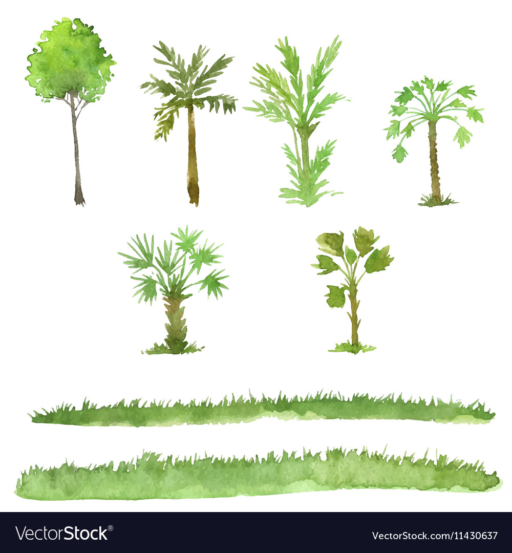Set trees drawing watercolor