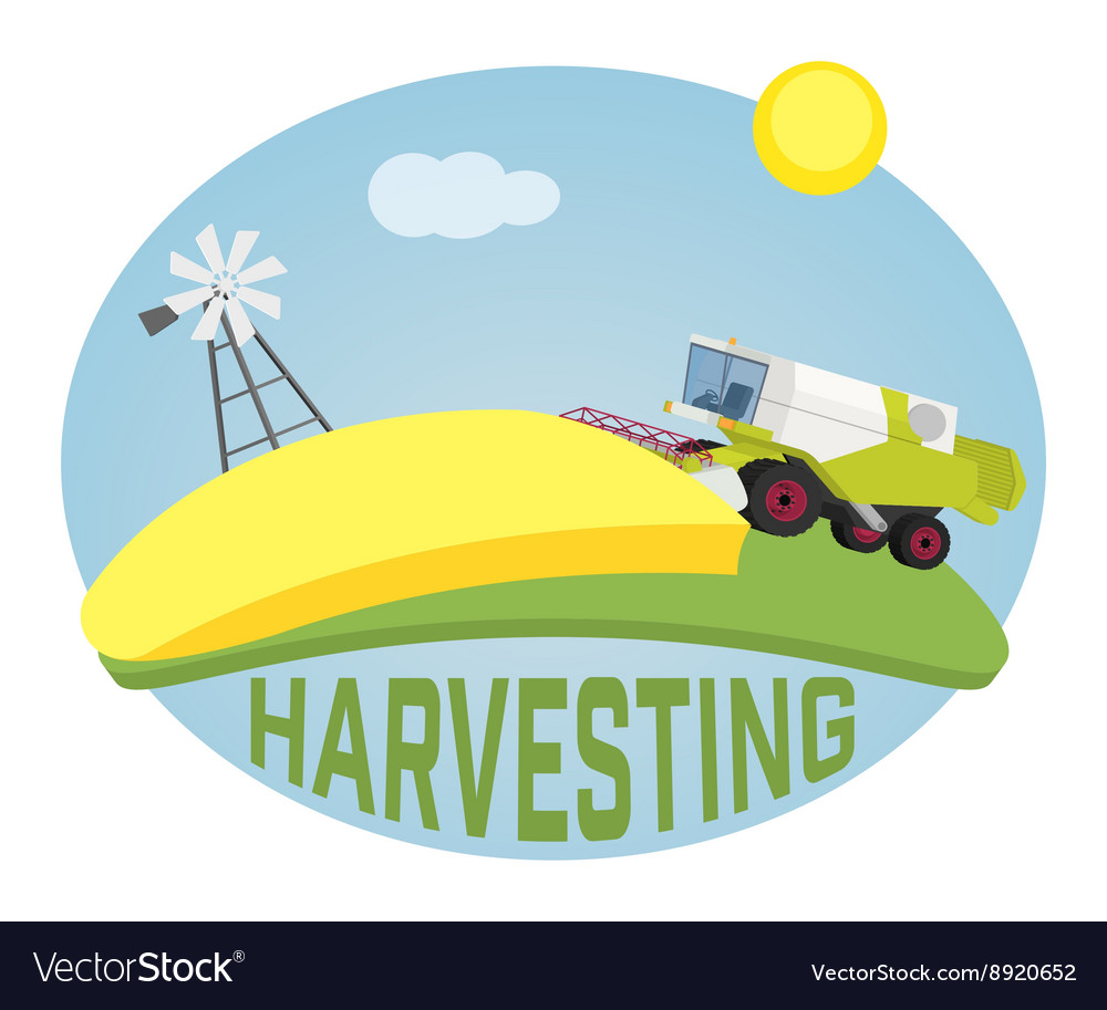 Combine harvester on a wheat field against sun vector image