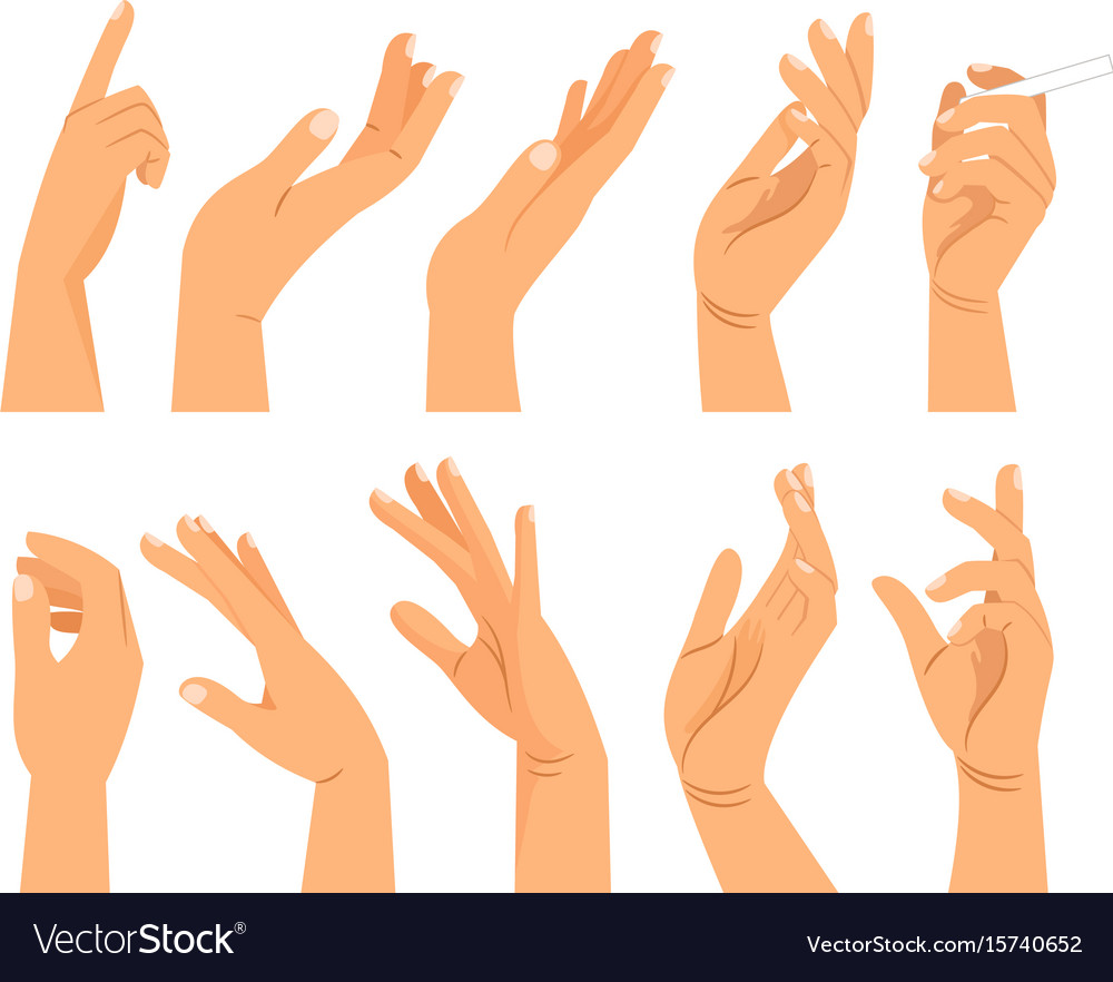 hand gestures in different positions royalty free vector